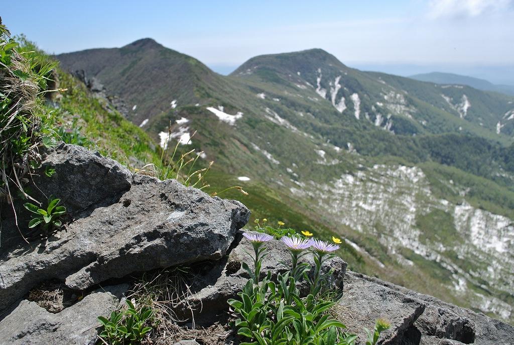 6月7日、徳舜瞥山とホロホロ山_f0138096_172122.jpg