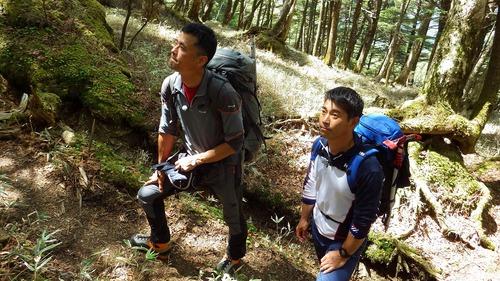 甲斐駒ケ岳_d0073005_1834416.jpg