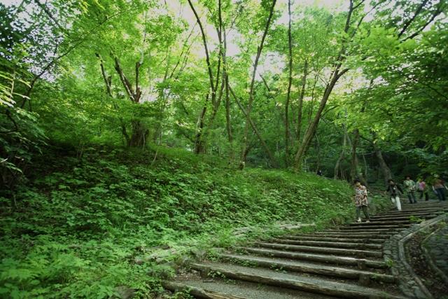 眼鏡橋に登ります_f0091207_22392454.jpg