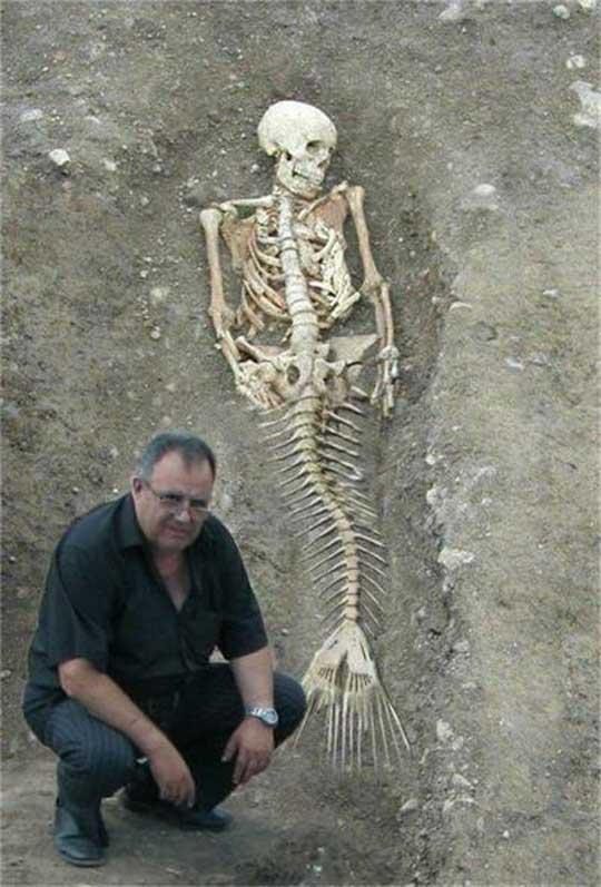例の「謎の生命体の姿」はどんなものだろうか?:こんな姿か?_e0171614_13202673.jpg