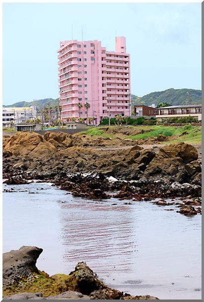 白浜・野島崎(千葉県)_d0123528_14155885.jpg
