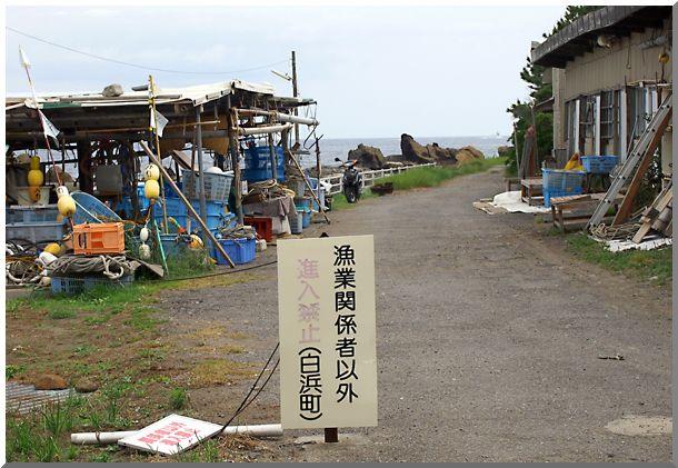 白浜・野島崎(千葉県)_d0123528_14231253.jpg