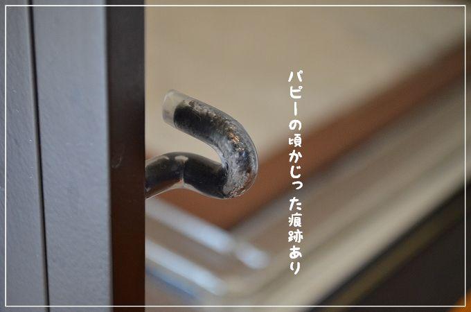 d0179828_848525.jpg