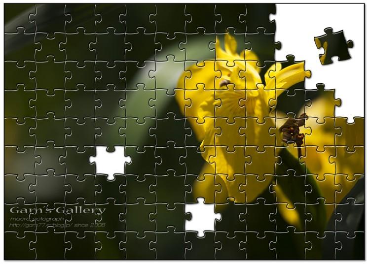 f0195893_735057.jpg