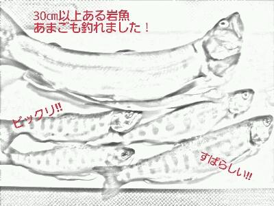 f0123502_22425622.jpg