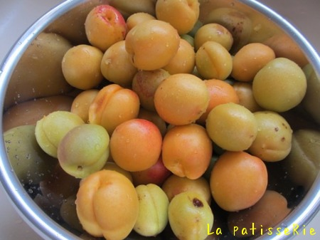 梅の収穫_d0183440_10192885.jpg