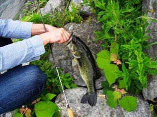 fishing_e0230141_13203251.jpg