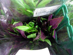 夏を感じる野菜がいっぱい!_c0141652_11231329.jpg