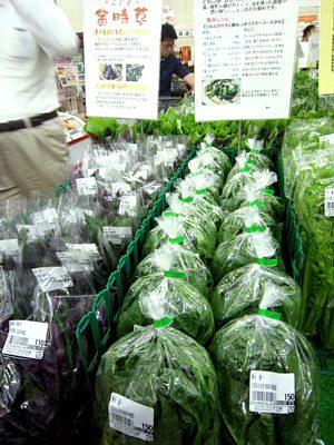 夏を感じる野菜がいっぱい!_c0141652_11233967.jpg