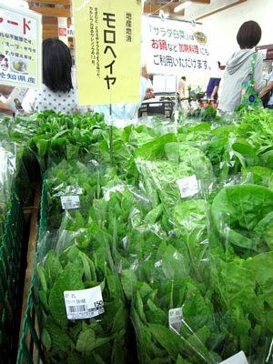 夏を感じる野菜がいっぱい!_c0141652_1123669.jpg