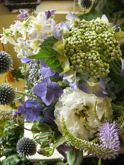 紫陽花。。。_a0229658_205215100.jpg