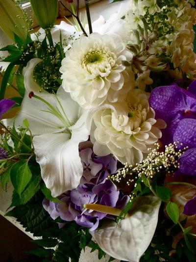 紫陽花。。。_a0229658_20542369.jpg