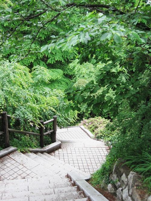 食いしん坊ふたり旅<5月・ソウル> 10☆新緑の南山~素敵カフェ_f0236260_2221551.jpg