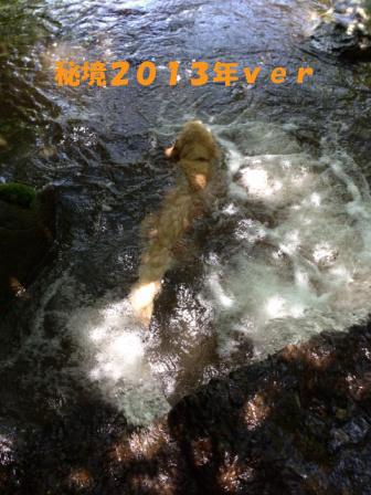 f0176830_12174272.jpg