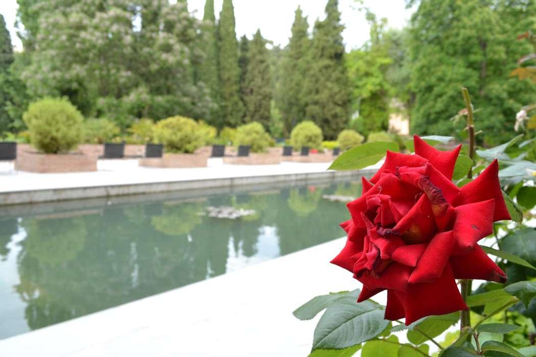 アルハンブラ宮殿 inグラナダ_d0086634_17355525.jpg