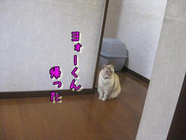 b0151748_12174339.jpg