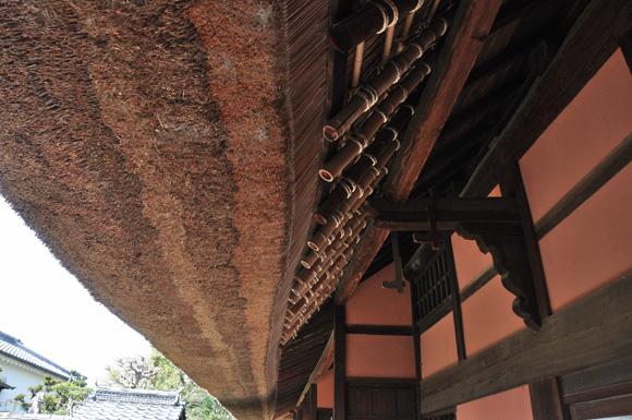 早朝散歩 流れ橋_e0164563_1416539.jpg