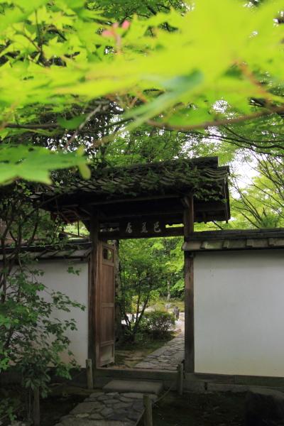 金福寺_e0051888_6194763.jpg