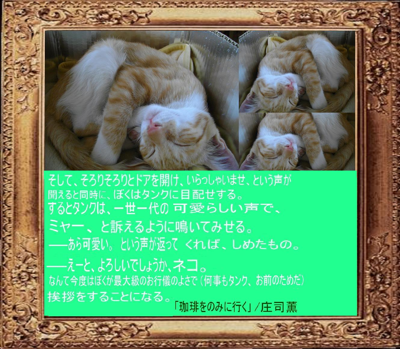e0295821_18154281.jpg