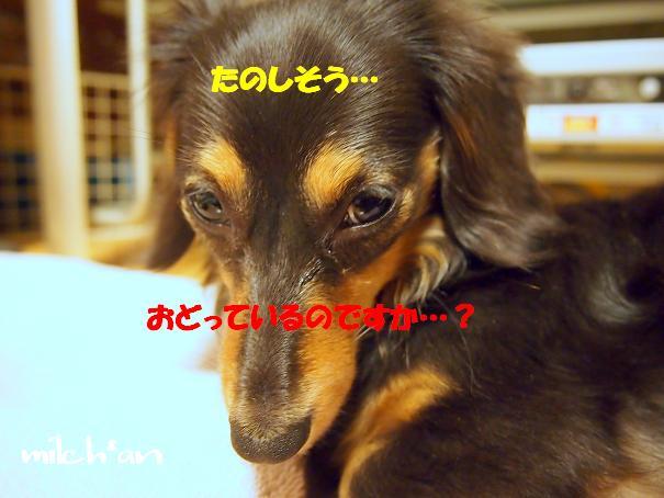 b0115642_2214569.jpg
