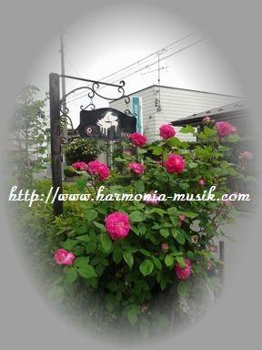 ピアノ教室看板☆薫る_d0165645_14291182.jpg