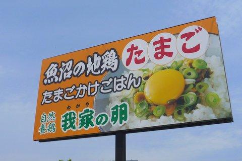 【滑走レポ 2013.5.10】 12/13シーズン最終日@かぐら_e0037849_8444640.jpg