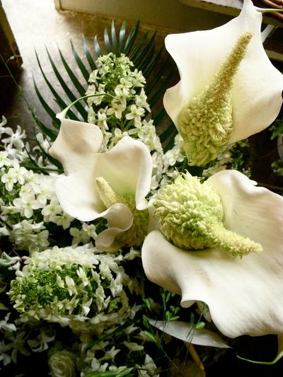 お祝い花。。。_a0229658_1321775.jpg