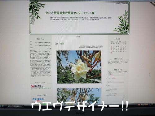 b0200291_20175336.jpg