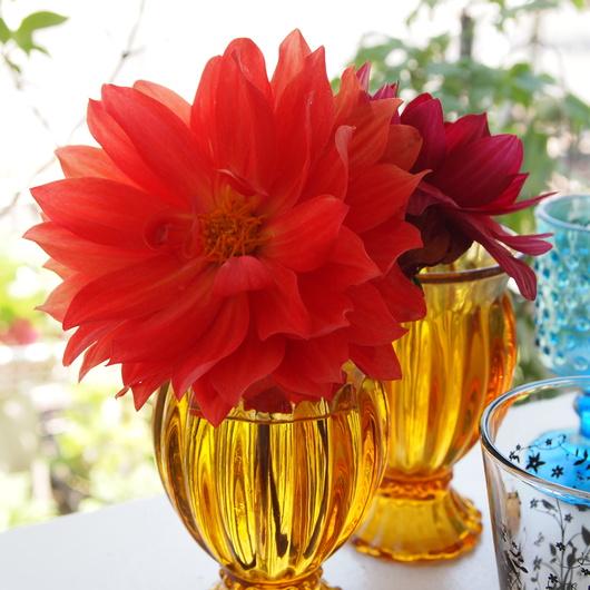 ガラスにお花_a0292194_21354693.jpg
