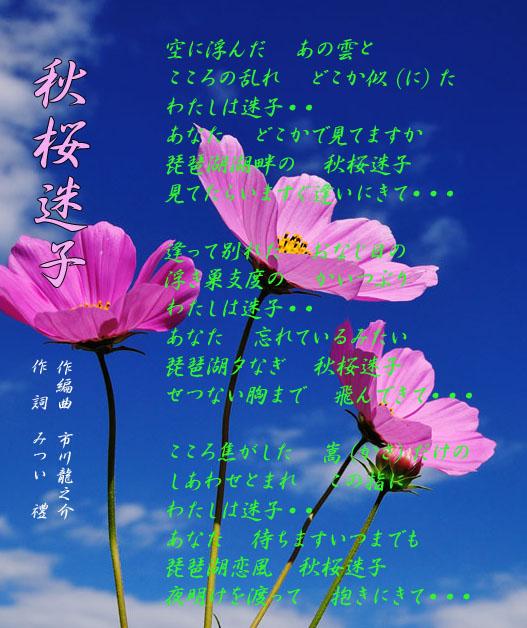 d0095910_1629482.jpg