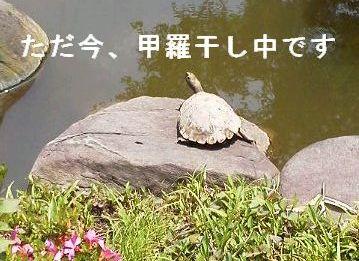 e0234016_2012712.jpg