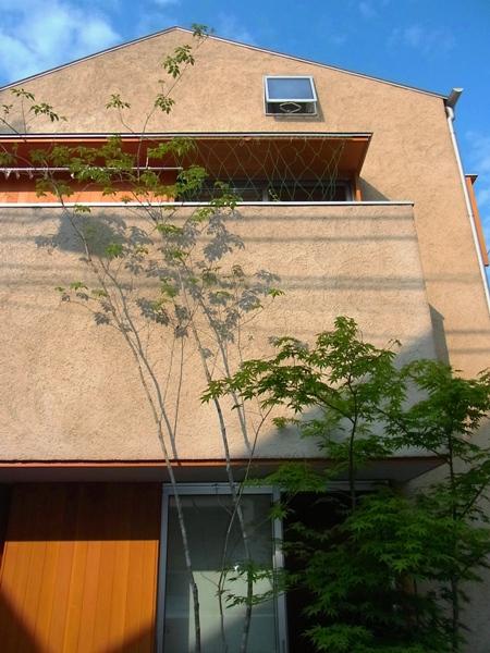 「阿佐ヶ谷の家」_c0019551_2151746.jpg