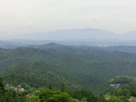 京都&吉野に行ってきました_f0178060_22473574.jpg