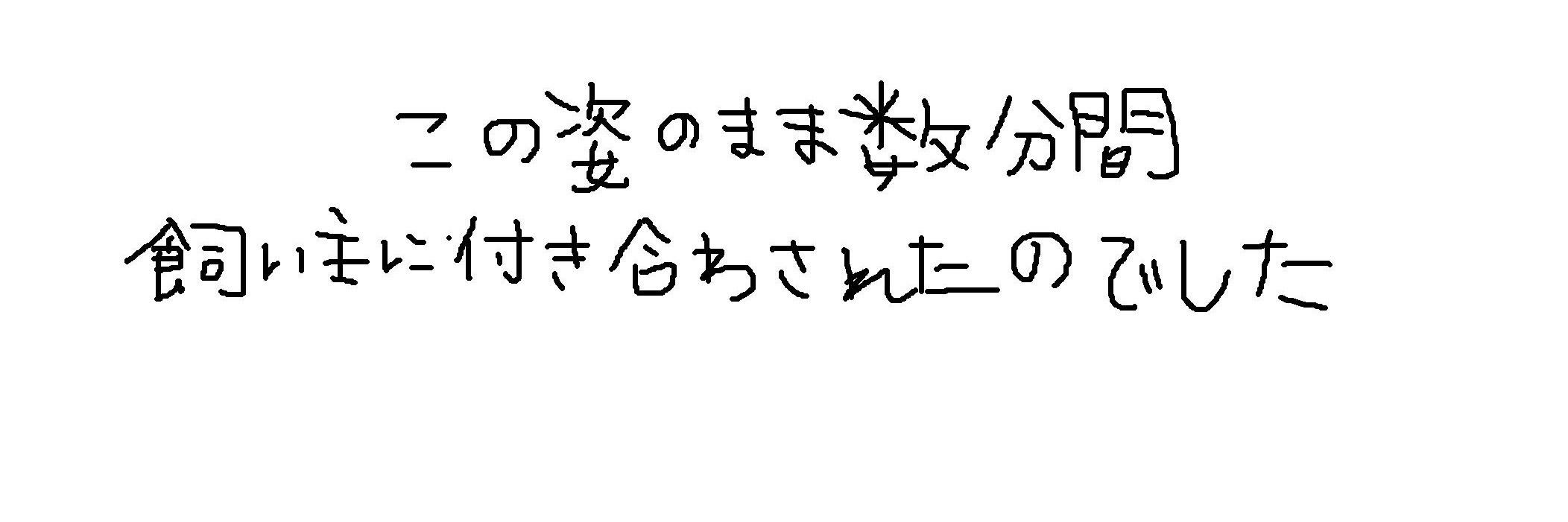 e0199784_2258517.jpg