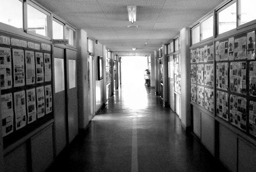 「伊自良川の自然」 -小学校の授業-_b0029488_11522084.jpg