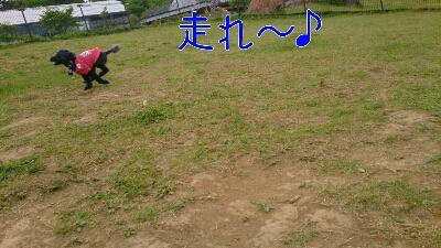 b0236618_8502910.jpg