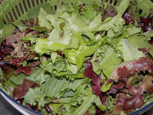 自然農や 有機野菜で。_a0125419_19563588.jpg