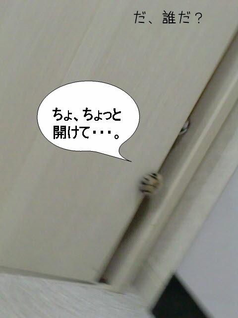 c0259945_13485388.jpg