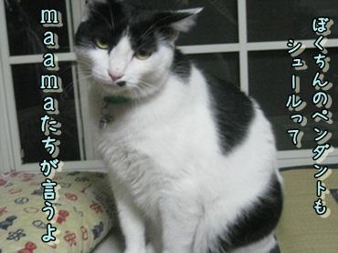 b0151748_12475613.jpg