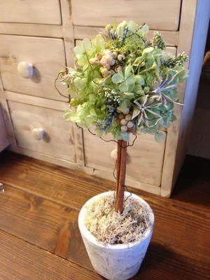 Berry Bouquet お花展 start!!_c0134086_2523921.jpg
