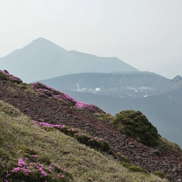 6月7日 韓国岳(Karakunidake) 前半_c0049299_20425427.jpg