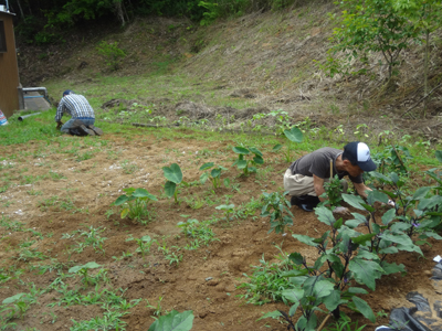 農園作業!_a0154110_18233827.jpg