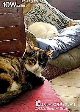 『猫ふんじゃったなギャラリー 11』は終了しました。_f0138928_12475244.jpg