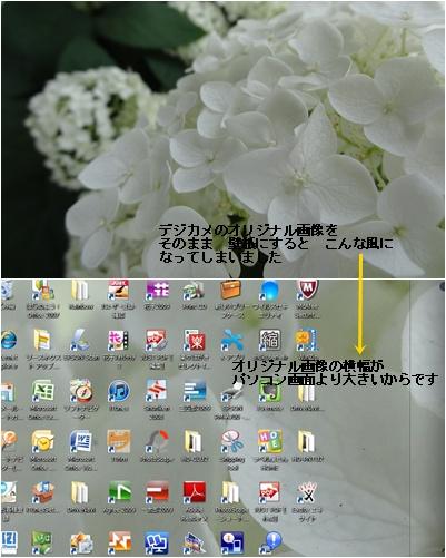 a0084343_2335276.jpg