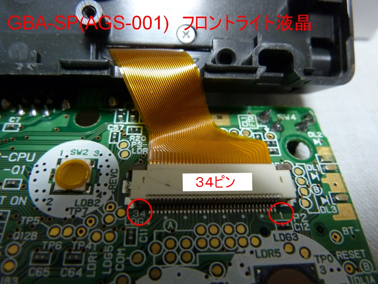 b0030122_931513.jpg
