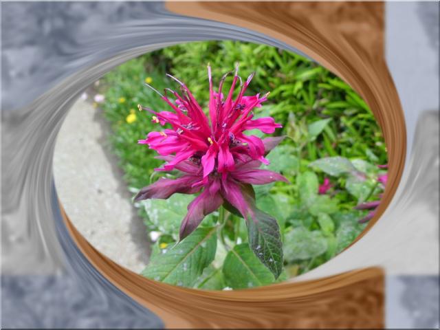 f0031546_2091197.jpg