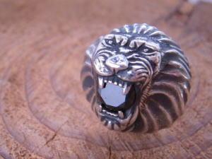 ライオンの指輪_d0237570_1184611.jpg