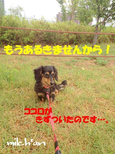 b0115642_23404989.jpg