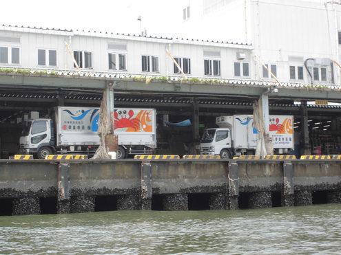 6月9日隅田川からレインボ-ブリッジまで_c0249569_9335690.jpg