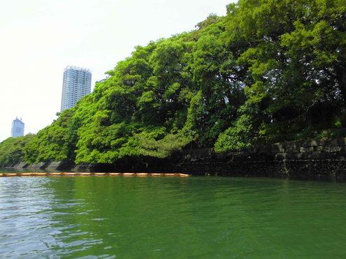 6月9日隅田川からレインボ-ブリッジまで_c0249569_9461593.jpg